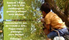 Cueillettes d'automne au P'tit Jardin du Local : week-end du 14 et 15 octobre