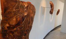 Espace Galerie : exposition  « À Bras le Corps », sculptures et installation de l'artiste FANFAN jusqu'au 13 mars 2019