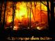 Jeudi 14 et vendredi 15 mars 2013 – « L'Homme Des Bois » – 20h30