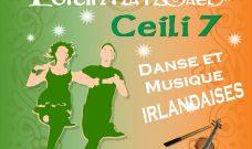 jeudi 9 septembre 2021 à 19h au Baptistère Saint-Jean : Soirée irlandaise avec Poitin na nGael &la Cie Ceili 7