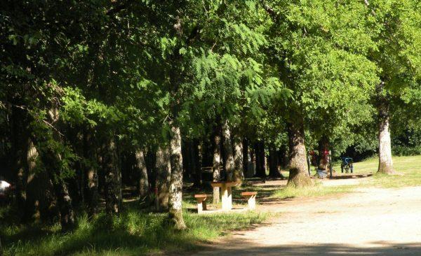 Mercredi 18 août de 9h30 à 18h : Sortie Familles aux Bois de Saint-Pierre